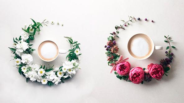 fotografías de flores, fotografías de café