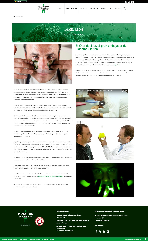 agencia de publicidad en sevilla, diseño web Sevilla, desarrollo web sevilla